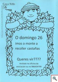 saidacastanas2014